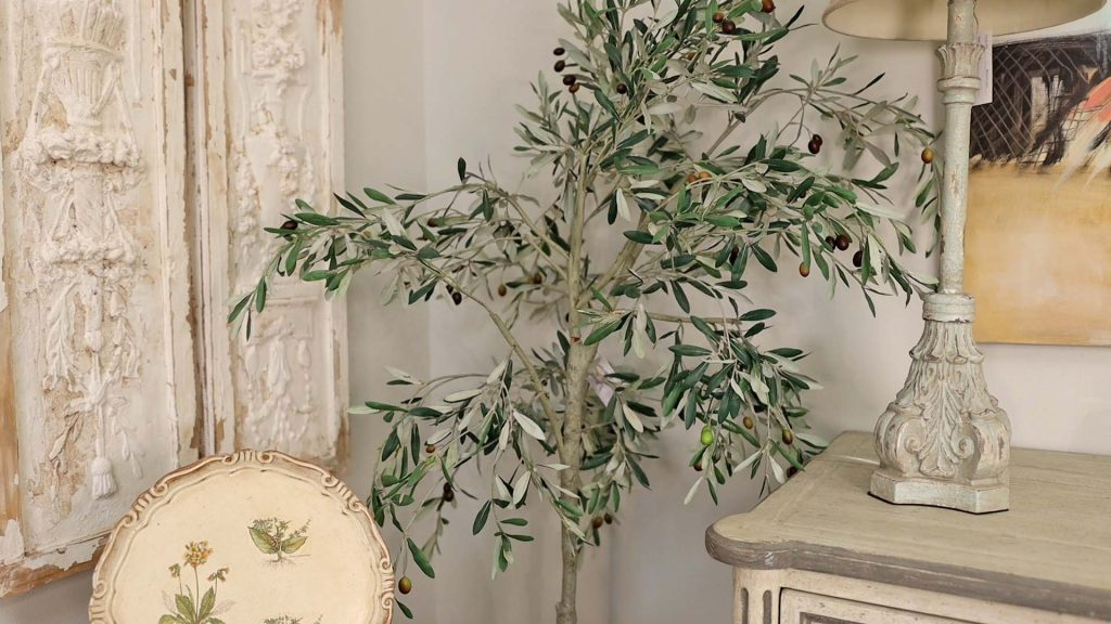 Olive tree at Village Antiques to show green as a neutral color in the farmhouse fall decor trend, by Amitha Verma.